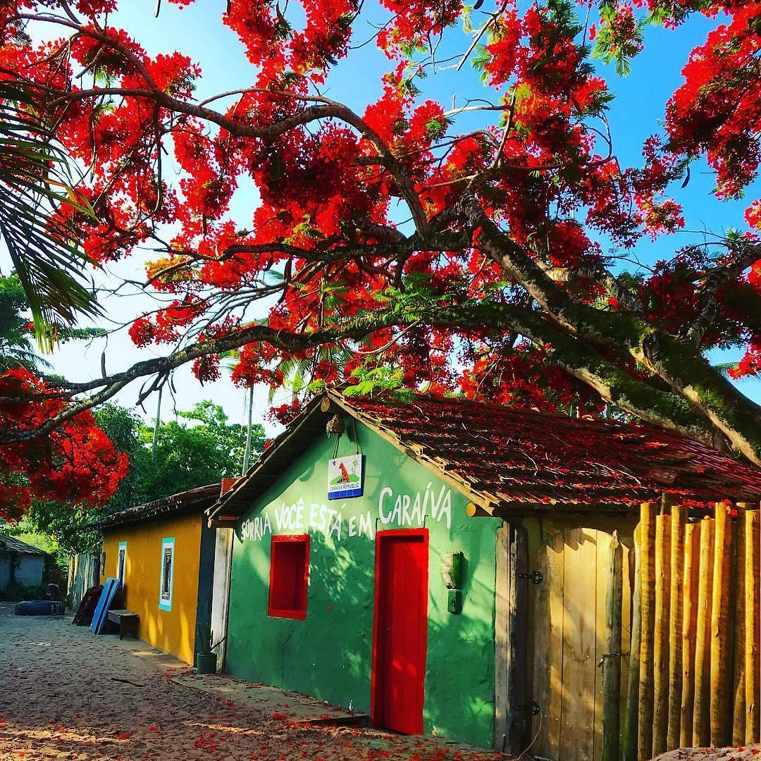 pagina-portoseguro---banner-destinos-caraiva-1-1080x1080px