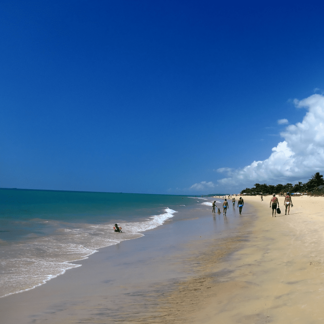 pagina-portoseguro---banner-praias-taperapua-1-1080x1080px
